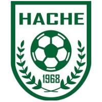 Escudo Hache